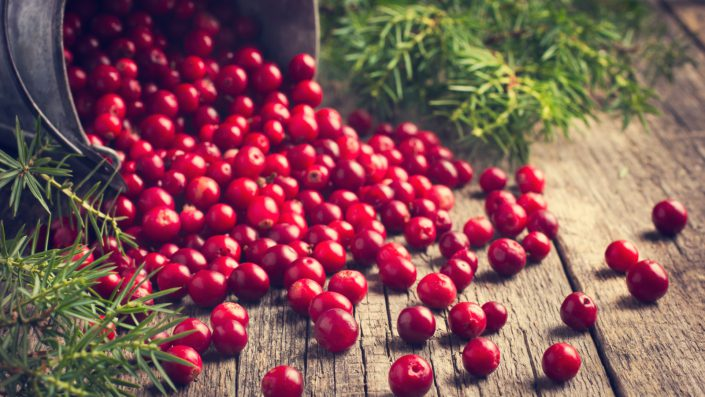 Cranberry food supplier