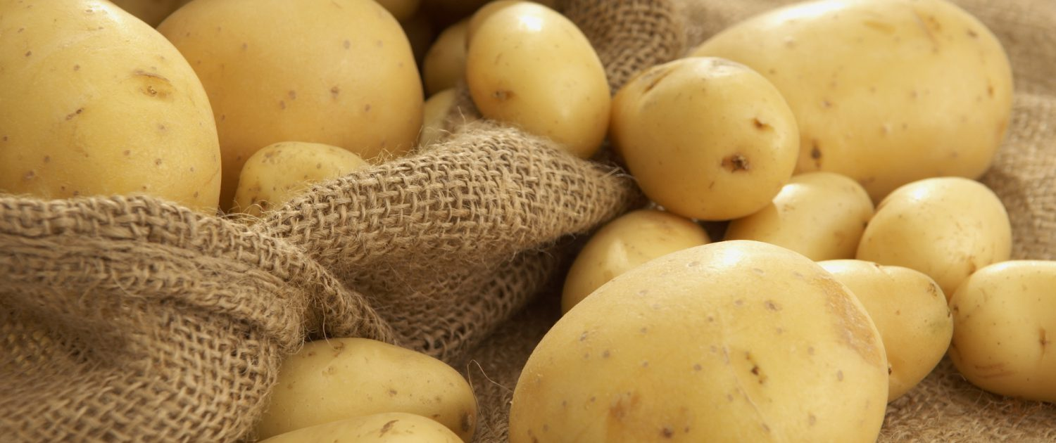 bulk potato food suppliers