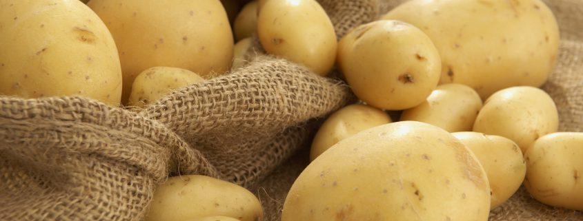 bulk potato food suppliers