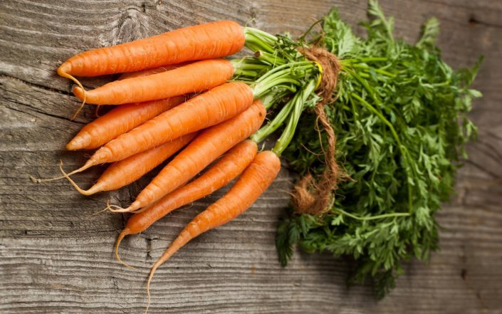 carrot food suppliers
