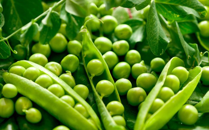 peas ingredients supplier usa