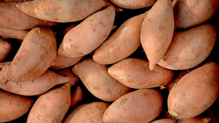 Sweet Potato suppliers for pet food ingredients
